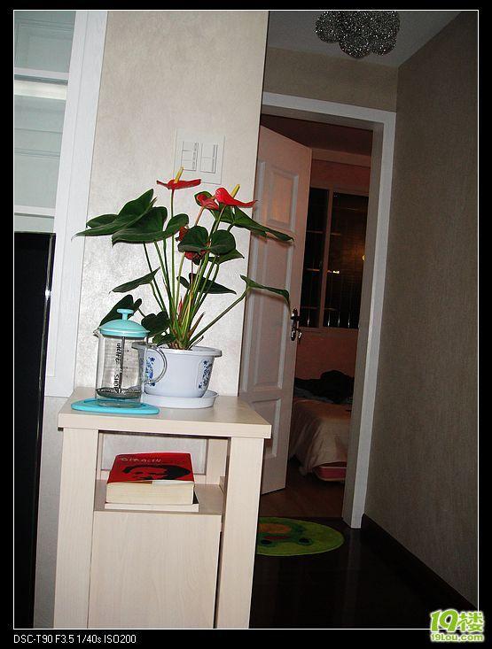 客厅鞋柜带花架效果图