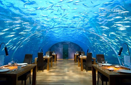惊人的全玻璃海底餐厅 马尔代夫度假酒店