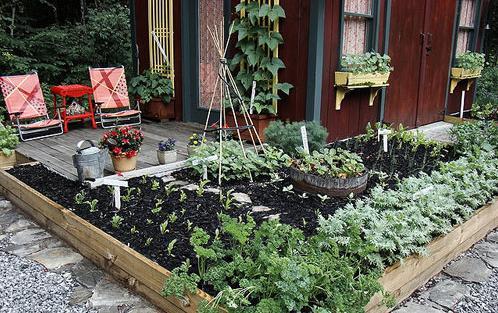 花园设计_花园设计效果图_阳台花园设计