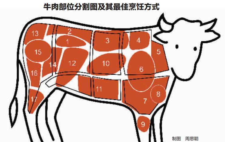 牛肉部位分割图及其最佳烹饪方式制图周思聪 现在的牛肉越来越贵了,我打算自己买牛肉来给儿子做牛排,可超市里的牛肉那么多种,看也看不懂,到底哪一种最适合切牛排呢?昨天,市民胡女士来电讲述买牛肉时遇到的困惑。 去年以来,牛魔王发威,宁波市场的牛肉价格上涨明显。市民最直接的感受是,餐馆里动辄五六十元的牛排,越来越小还越来越薄,拉面里的牛肉片也像纸一样。怎样选一块最嫩的牛肉回家自制牛排?昨天,记者请麦德龙超市肉类部的工作人员庖丁解牛,通过一张图弄懂牛肉各个部位的名称和吃法。 最嫩的牛肉是牛柳 做牛排最好选