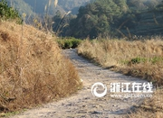"""浙江七旬""""愚公""""自费修路 700米道路花尽养老钱"""