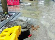 新芝幼儿园门前道路修了一半没动静 家长雨天接送很犯愁