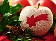 """宁波苹果""""穿""""上圣诞装 一个卖出了一斤价"""