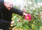 为这位老人的梦想点赞 他用11年种出一片花海
