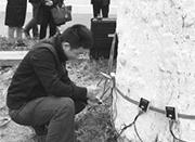 """宁波将对古树全面养护 四棵千年银杏首次""""B超体检"""""""