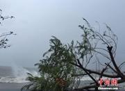 """台风""""海马""""在广东汕尾登陆 中心最大风力有14级"""