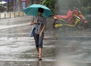宁波这个星期真正是秋日模样 天气挺好气温有点凉
