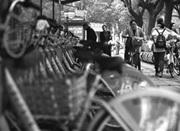 宁波公共自行车总租借人次破1亿 可绕地球9000圈