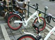 宁波公共自行车哪家强?奉上最详细对比