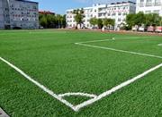 国家要求5年内全国建6万个足球场 当前仅1万个