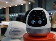 甘中学:人机融合、发展智能机器人是大势所趋