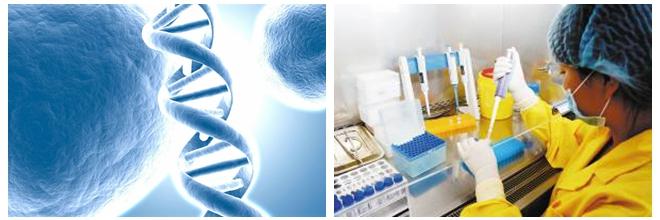 一根头发能检测疾病 宁波将有基因检测中心