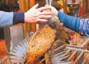 宁波多部门夜查机场路活禽黑市 发现500多只活鸡