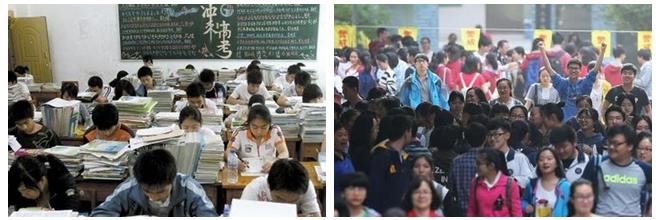 浙江新高考招生方案 考生可填80个志愿