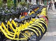 两家共享单车同时宣布3天内免费 宁波人骑起来