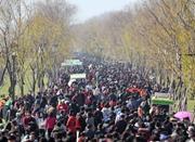 烟花爆竹禁燃第二年 杭州春节期间空气质量获环保部点赞