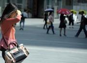 宁波今天最高温将达20℃ 这是冷空气前例行升温