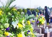 宁波清明运输方案出炉 今年开通14条公交扫墓专线