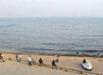 我国海平面去年上升38毫米