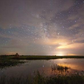银河下的荷塘夜色